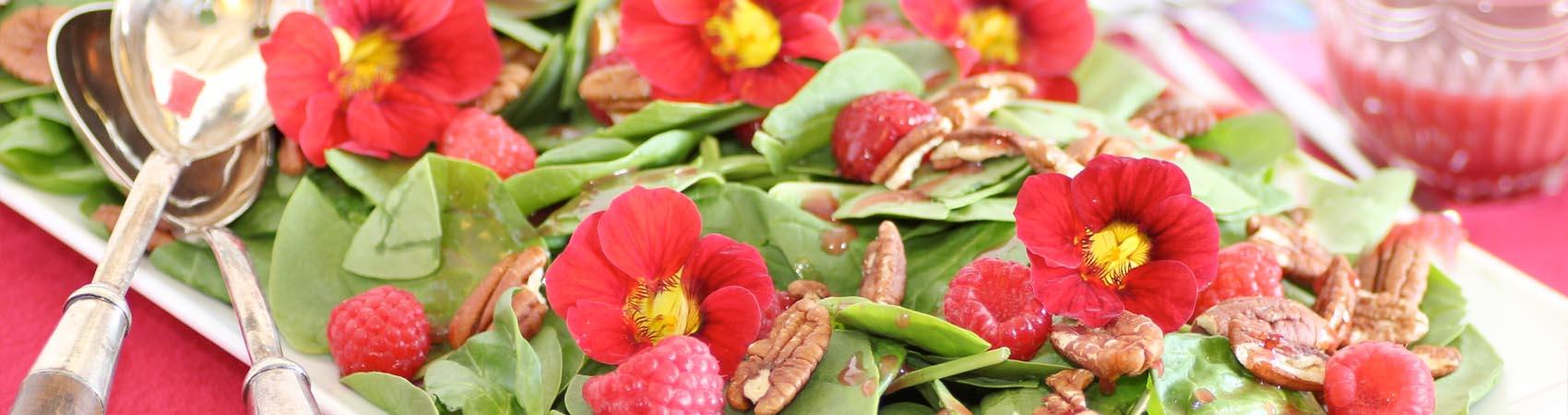 Fiori da mangiare misya magazine for Fiori edibili