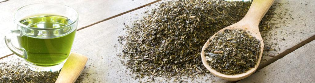Tè Verde, fa bene se sai come usarlo