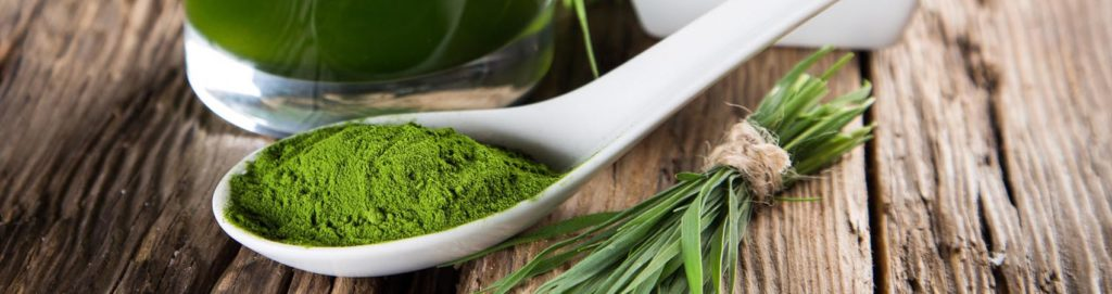 Spirulina, un'alga super food