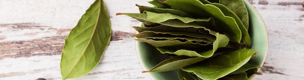 Tutti i modi per usare le foglie in cucina