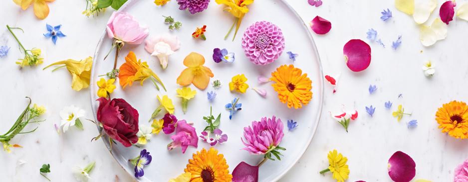 Dalla passerella al food, la primavera è flower boom e ha già conquistato tutti