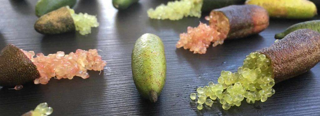 Lime di Sicilia: dalla terra degli agrumi ecco un nuovo gioiello