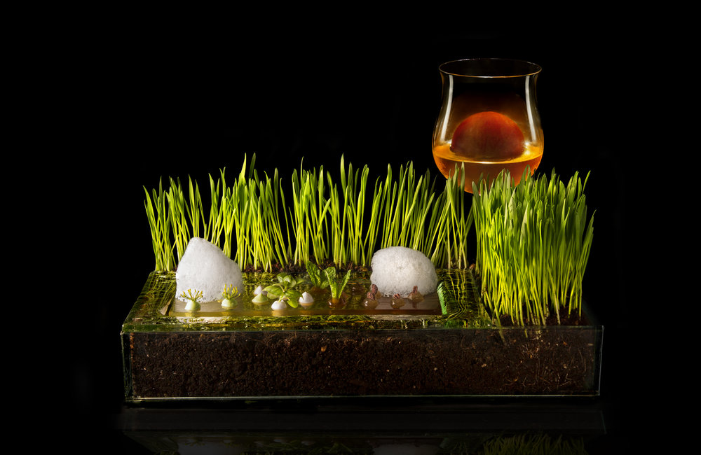 Cucina molecolare cos è la storia alimentipedia enciclopedia