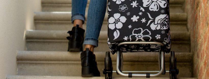 Il carrello della spesa:un fedele alleato al supermercato e non solo