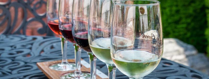 La guida per la degustazione del vino: qui le tecniche per imparare tutto