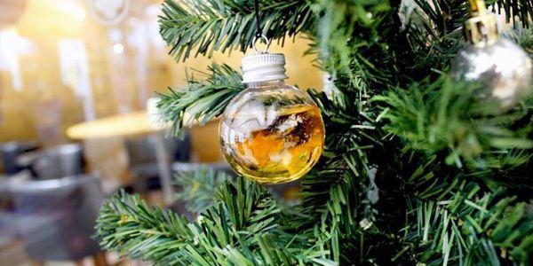 Palline di Natale alcoliche: un must trendy che ci ha fatto impazzire