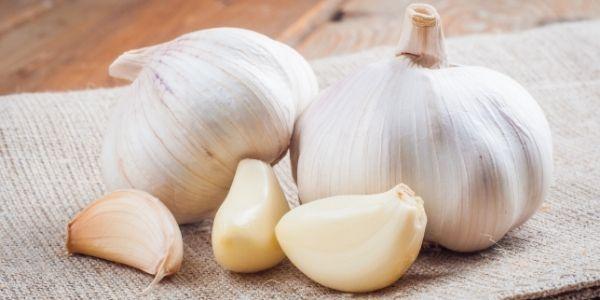 Errori da non fare quando usiamo l'aglio in cucina