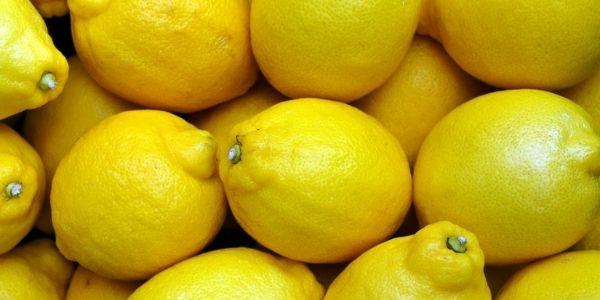 Tutto sui limoni: le varietà più famose ed apprezzate